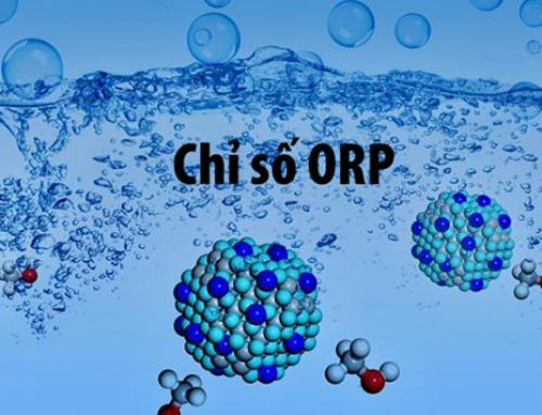 Chỉ số nước chống oxy hóa như thế nào? Chỉ số này có an toàn với người sử dụng
