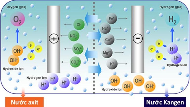 Máy lọc nước Kangen tạo nước điện giải có thể điều chỉnh pH